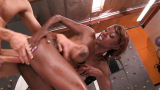 Aphrodisiac busty Alana Angel gives a head on a dick after cunnilingus